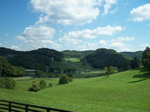 The Rolling Hills of Kentucky