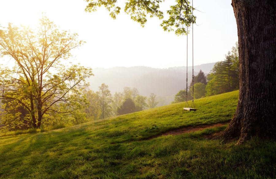 a swing on a sunny hillside