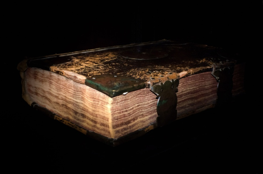 an old, buckled leather-bound book